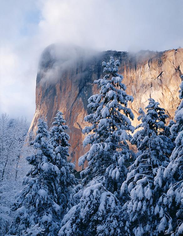 Winter sunset on El Capitan, Yosemite Valley, Yosemite National Park, California  1992