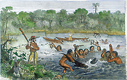 Henry Walter Bates (1825-92) English traveller and naturalist who, with Alfred Russell Wallace, explored the Amazon (1848-1859). Bates, with native help, capturing an alligator on the River Amazon. Natives also presenting specimens of turtles. Hand-coloured engraving.