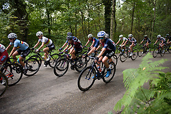 Tayler Wiles at Boels Rental Ladies Tour Stage 5 a 141.8 km road race from Stamproy to Vaals, Netherlands on September 2, 2017. (Photo by Sean Robinson/Velofocus)