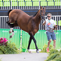 Jumping - Final Horse Inspection - Rio 2016 Olympic Games