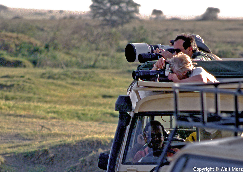 Photographers at work on the Serengeti Plains.  Two or three photographers assign to a vehicle.  Photo target was an elephant with her calf.