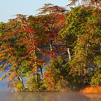 Lake Waban in Wellesley showing a magical mixture of early fall foliage color and fog while the nature scenery is painted by the morning light. <br />