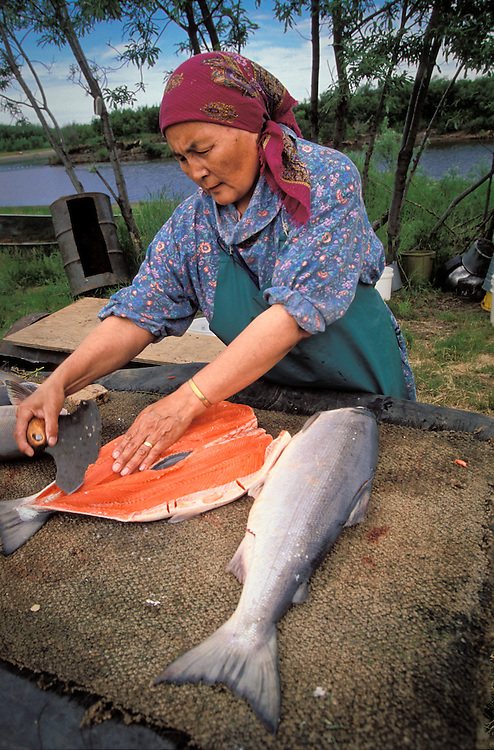 Vera Spein Cuts Salmon With A Traditional Ulu Knife At