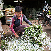 A man cuts flowers at the afternoon flower street market in Mandalay, Myanmar (Burma).