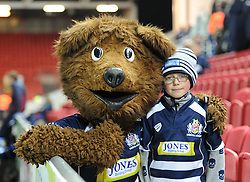 Spectator at the British and Irish Cup match between Bristol Rugby and Bedford Blues at Ashton Gate on December 11, 2015 in Bristol, England - Mandatory by-line: Paul Knight/JMP - Mobile: 07966 386802 - 11/12/2015 -  RUGBY - Ashton Gate Stadium - Bristol, England -  Bristol Rugby v Bedford Blues - British and Irish Cup