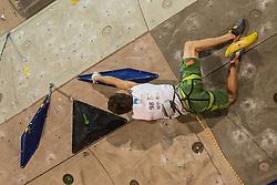 Domen Skofic (SLO) during men final competition of IFSC Climbing World Cup Kranj 2014, on November 16, 2014 in Arena Zlato Polje, Kranj, Slovenia. (Photo By Grega Valancicr / Sportida.com)