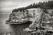 High cliffs at Cape Mears, which support a colony of Common Murres, located near Tillamook, Oregon