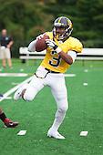 Maryland High School Football 2012