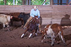 September 23, 2017 - Minshall Farm Cutting 5, held at Minshall Farms, Hillsburgh Ontario. The event was put on by the Ontario Cutting Horse Association. Riding in the $25,000 Noivce Horse Class is Eric Van Boekel on Love That Dog owned by the rider.