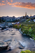 Stream flowing in an alpine basin of Mount Rohr at sunset, Coast Mountains British Columbia Canada