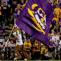 September 8, 2012; Baton Rouge, LA, USA;  LSU Tigers mascot Mike the Tiger runs with a flag against the during a game against the Washington Huskies at Tiger Stadium. LSU defeated Washington 41-3.  Mandatory Credit: Derick E. Hingle-US PRESSWIRE