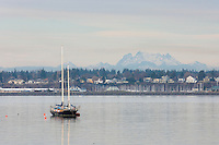 Sailboat anchored in Bellingham Bay, Boulevard Park Bellingham Washington USA