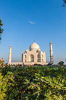 The Taj Mahal in the early morning as seen from an angle off to the side. Agra, Uttar Pradesh,  India.