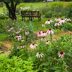 The herb/medicinal garden at the Oakland House Seaside Resort in Brooksville, Maine.  Blue Hill Peninsula.  East Penobscot Bay.