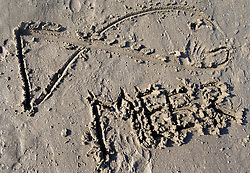 "SYMBOLBILD - das Symbol eines Fisches mit dem Schriftzug ""Meer"" in Sand gemalt, aufgenommen am 23.08.2015 in Caorle, Italien // the symbol of a fish with the lettering ""Meer"" drawed in sand in Caorle, Italia on 2015/08/23. EXPA Pictures © 2015, PhotoCredit: EXPA/ Jakob Gruber"