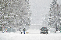 A man walks his two dogs along Pennsylvania Avenue in Coeur d'Alene as the snow continues to fall in the recent storefront Friday.