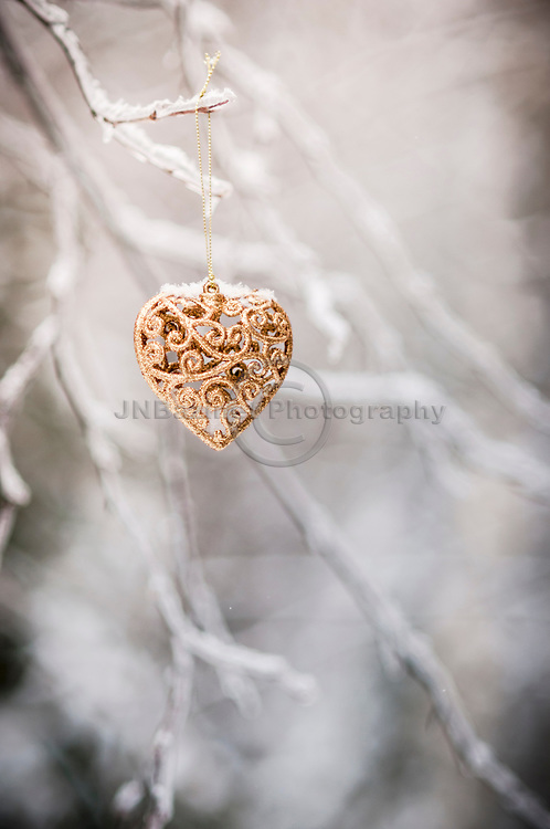 Solitary golden heart in a winter forest