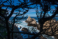 Scenes and details from Point Lobos State Natural Reserve in California; crashing waves, rocky cliffs and unique forest along the beautiful California coast.