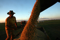 Harvested soybeans are loaded onto a truck for transport just outside of Sinop, in Mato Grosso state in Brazil on April 8, 2008. (Photo/Scott Dalton)