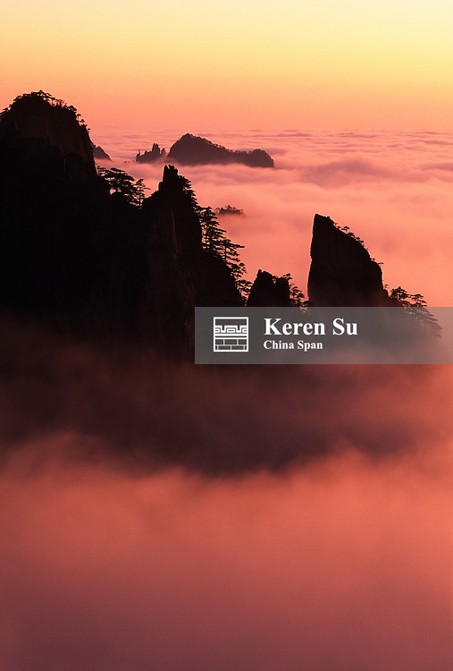 China, Anhui Province, Mount Huangshan, rising above mist
