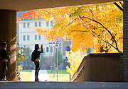 U-M Flint faculty and student profiles, campus stock and campus building exterior night photos on Oct. 30, 2013.