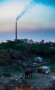 16th May 2014, Yamuna River, New Delhi, India. A mahout's camp at dusk with the Rajghat coal-fired power station in the background, New Delhi, India on the 16th May 2014<br />