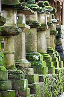 Japan Mara Row of stone lanterns in garden
