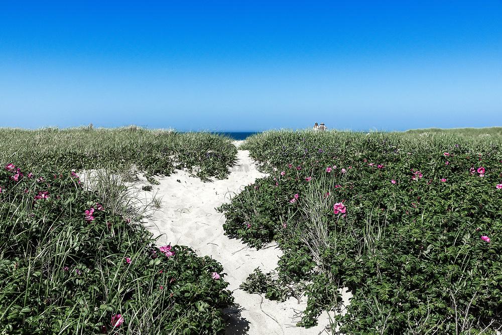 Great Point beach path, Nantucket, Massachusets, USA.