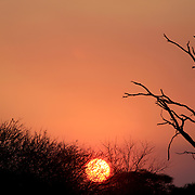 Sunset in Etosha Natural Reserve Wild Park, Namibia