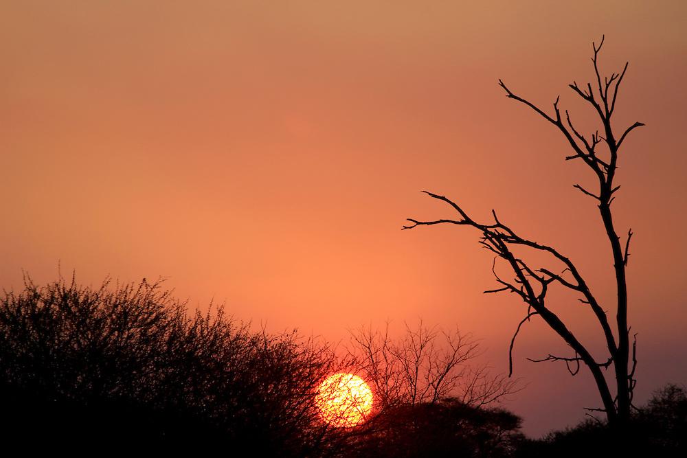 Sunset in Etosha Natural Reserve Wild Park, Namibia
