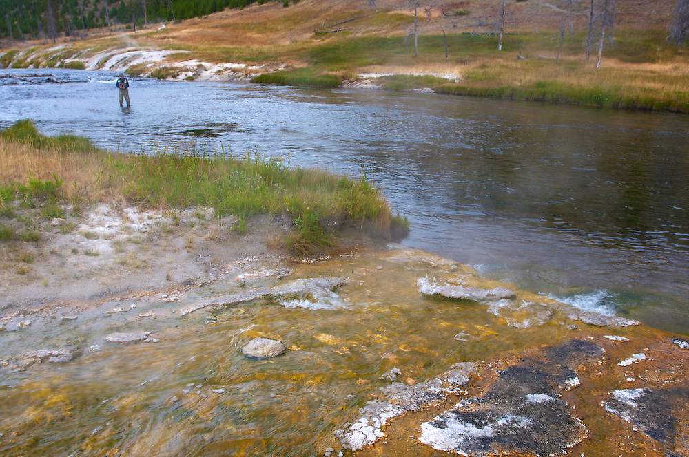 Geothermal wonders surround a fly fisherman on Yellowstone River.