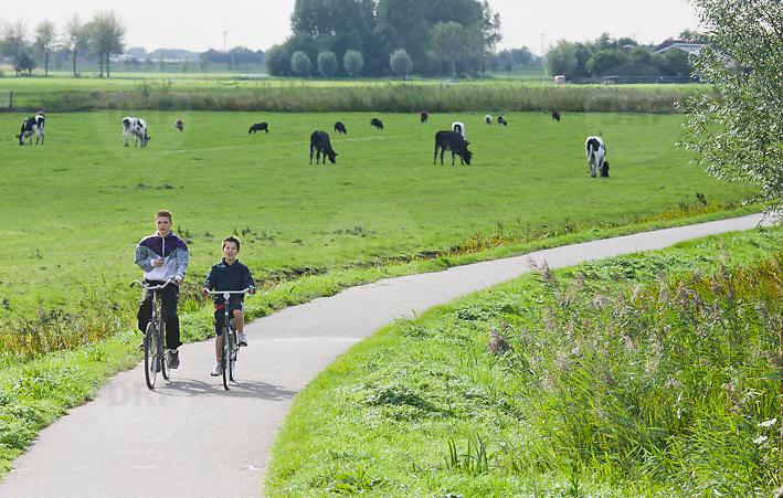 Nederland Delft 17-09-2010 20100917     A4 Delft - Schiedam wordt definitief verlengd,  er  is begin deze maand officieel besloten tot de aanleg van het stuk snelweg waarover zo'n vijftig jaar is gesproken. Natuurgebied dat in de toekomst zal moeten wijken na het doortrekken van de A4. Jongens fietsen op fietspad fietsroute door natuurgebied. Rijkswaterstaat en het ministerie van VWS hebben dat laten weten.Over de nieuwe verkeersader wordt al decennialang gesteggeld, vooral omdat de weg het natuurgebied Midden-Delfland doorboort...De zeven kilometer asfalt tussen Delft en Schiedam doorkruist straks verdiept of via een tunnel het natuurgebied tussen de twee steden. Het belangrijkste pluspunt is dat de A13 wordt ontlast. Op rijksweg A13 staat dagelijks de voor de economie schadelijkste file van Nederland. Met het project A4 Delft-Schiedam willen lokale en regionale overheden en het Rijk de problemen rond bereikbaarheid en leefbaarheid op en rond de A13 en de A4 Delft-Schiedam oplossen. Midden Delftland. , relaxing, rijbaan, rijbanen, route, ruimte, ruimtelijk, ruimtelijke, ruimtelijke omgeving, ruimtelijke ordening, Ruimtelijke plannen, ruimtelijke planning, ruimtelijke visie, ruraal, rurale omgeving, rustiek, rustieke, rustieke omgeving, rustig, rustige, space, spare time, sportief, sportieve, sportive, stedelijke vernieuwing, stil, streekplan, sunny, terrein, The Netherlands Holland Nederland, toekomst, toekomstige plannen, toekomstplannen, tracé, traject, uitgestrektheid, verbinding, verbindingen, vergezicht, vergezichten, verkeer en vervoer, verkeer en waterstaat, verkeersnet, verlengen, vernieuwing, vervoer, vewezenlijken, vitaal, vitale, vitaliteit, vrije tijd, vrouw, vrouwen, wegenbouw, wegenbouwplanologie, wegennet, wegnet, wegverbinding, wei, weide, weidegang, weiland, wijds, wijdsheid, Youth