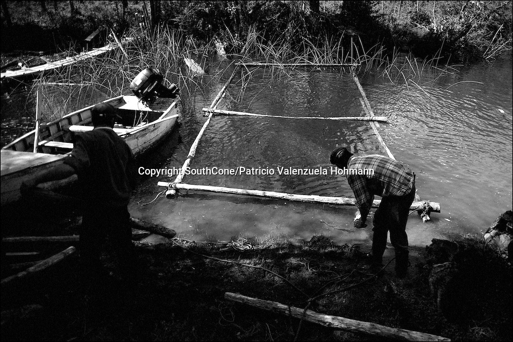 Bernardo and Lautaro work on the frame to a &quot;Balsa&quot; (boat).<br />  of In Chile`s western Patagonia the Balseros (boatmen) of the Baker river are in danger of loosing it`s ways of work as the last  families that live on logging (only dead trees logging permitted by law) move their production using the river as a highway and natural landscape are threaten by the &quot;Hidroaysen Project&quot;, a $3 billion project which plans to build five dams in Patagonia rivers, two of  them in the Baker river, flooding thousands of hectares and building a 3.000 km. long transmission line which will send energy to the huge northern Chilean mining industry destroying one of the world most pristine and untouched natural areas of the planet.