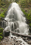 Front view of Fairy Falls in the Columbia River Gorge Scenic Area of Oregon.