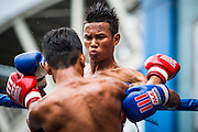 28 JULY 2013 - BANGKOK, THAILAND:  Boxing action during the ASEAN Muay Thai Championship at MBK shopping center in Bangkok.      PHOTO BY JACK KURTZ