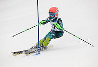 J4 State Slalom girls 1st run at Stratton Mountain March 13, 2011.