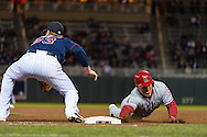 Mike Trout #27 of the Los Angeles Angels dives back to 1st base ahead of a pick-off attempt during a game against the Minnesota Twins on April 16, 2013 at Target Field in Minneapolis, Minnesota.  The Twins defeated the Angels 8 to 6.  Photo: Ben Krause