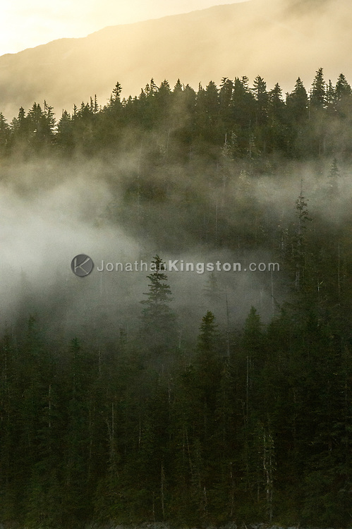 Mist rises from the waters of Alaska's inside passage revealing forest covered hills at dawn.