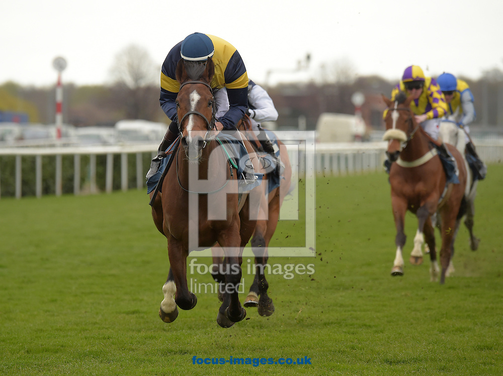 Hidden Justice with Phillip Makin (dark blue and yellow) wins in the Equestrian Surfaces Ltd Handicap stakes  during the Afternoon Racing meeting at Doncaster Racecourse, Doncaster.<br /> Picture by Martin Lynch/Focus Images Ltd 07501333150<br /> 22/04/2016