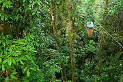 Costa Rica 1-14_23-09 Rainforest Aerial Tram.