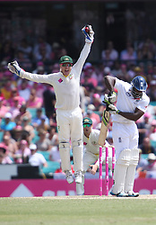 © Licensed to London News Pictures. 05/01/2014. Brad Haddin jumps and appeals after catching the ball during day 3 of the 5th Ashes Test Match between Australia Vs England at the SCG on 5 January, 2013 in Melbourne, Australia. Photo credit : Asanka Brendon Ratnayake/LNP