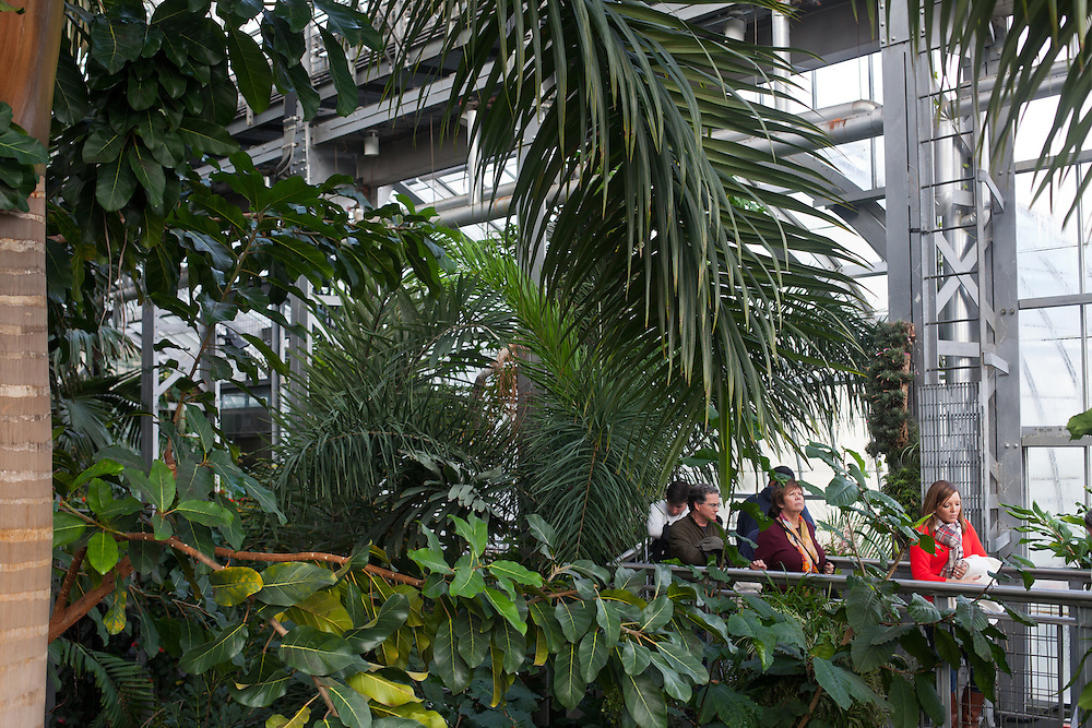 Visitors explore inside the U.S. Botanic Gardens, located on the National Mall in Washington DC.
