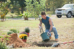 Man planting a tree and flowers