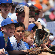NEW YORK, NEW YORK - June 22: Young fans clamour for autographs above the Kansas City Royals dugout  during the Kansas City Royals Vs New York Mets regular season MLB game at Citi Field on June 22, 2016 in New York City. (Photo by Tim Clayton/Corbis via Getty Images)