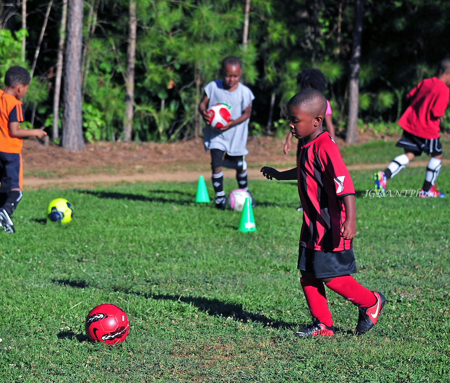 Tiger Soccer Club 2014<br />