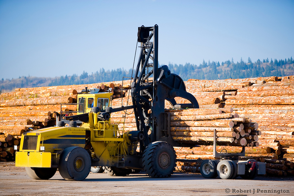 Heavy logging equipment is used to stack logs at a sawmill operation in the Pacific Northwest.