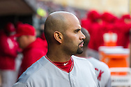 Albert Pujols #5 of the Los Angeles Angels looks on during a game against the Minnesota Twins on April 16, 2013 at Target Field in Minneapolis, Minnesota.  The Twins defeated the Angels 8 to 6.  Photo: Ben Krause