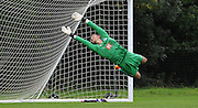 Kleyton Perntreou makes a flying save during the U21 Professional Development League match between U21 QPR and U21 Crystal Palace at the Loftus Road Stadium, London, England on 31 August 2015. Photo by Michael Hulf.