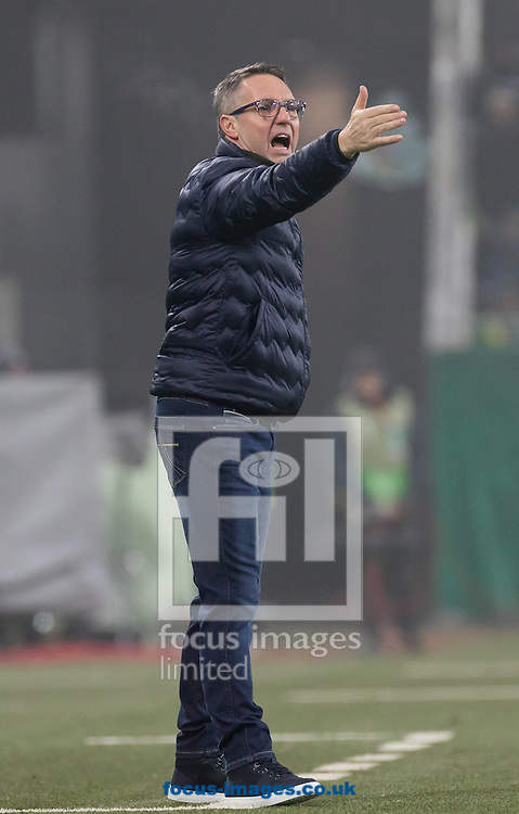 Damir Canadi , manager of Rapid Vienna during the UEFA Europa League match at Allianz Stadion, Vienna<br /> Picture by EXPA Pictures/Focus Images Ltd 07814482222<br /> 08/12/2016<br /> *** UK &amp; IRELAND ONLY ***<br /> <br /> EXPA-PUC-161208-0208.jpg