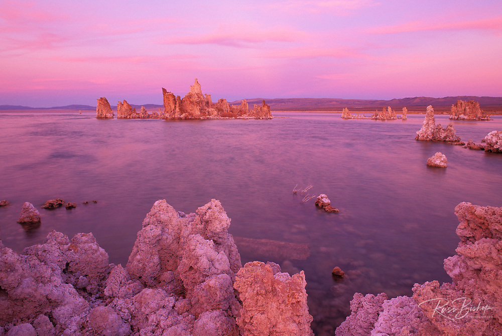Evening light on tufa formations at the south shore of Mono Lake, Mono Basin National Scenic Area, California